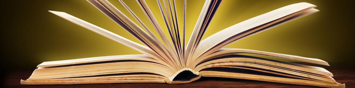 Find inspiration til bøger til børn og unge her på siden