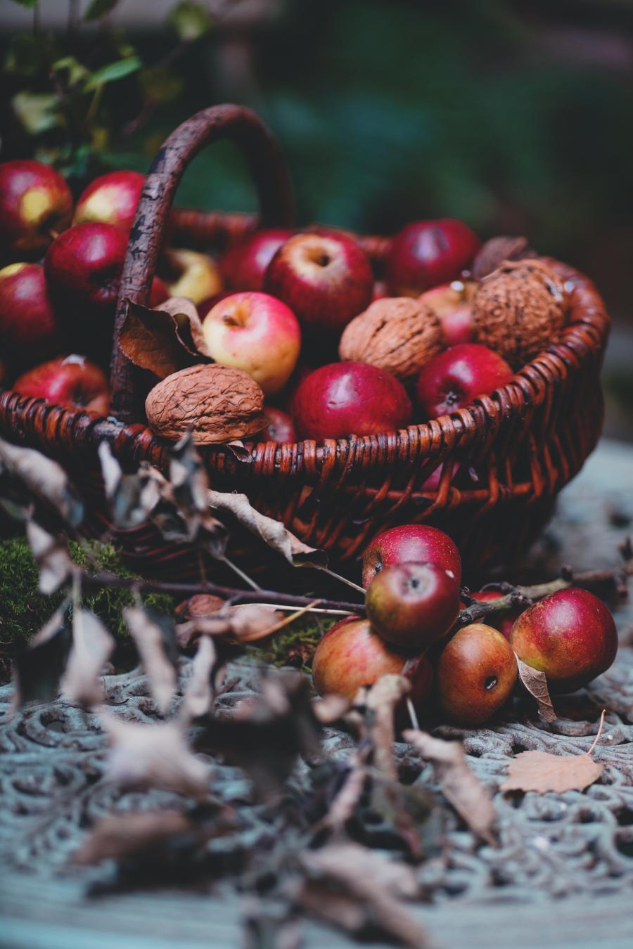 Frugt og æbler fra haven i en kurv