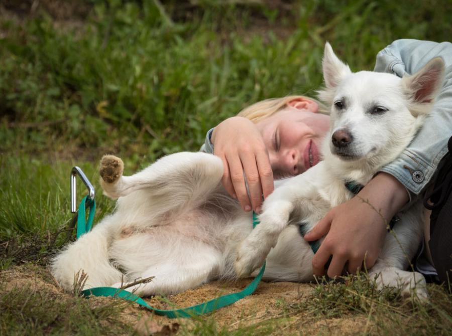dreng og hund på karensminde