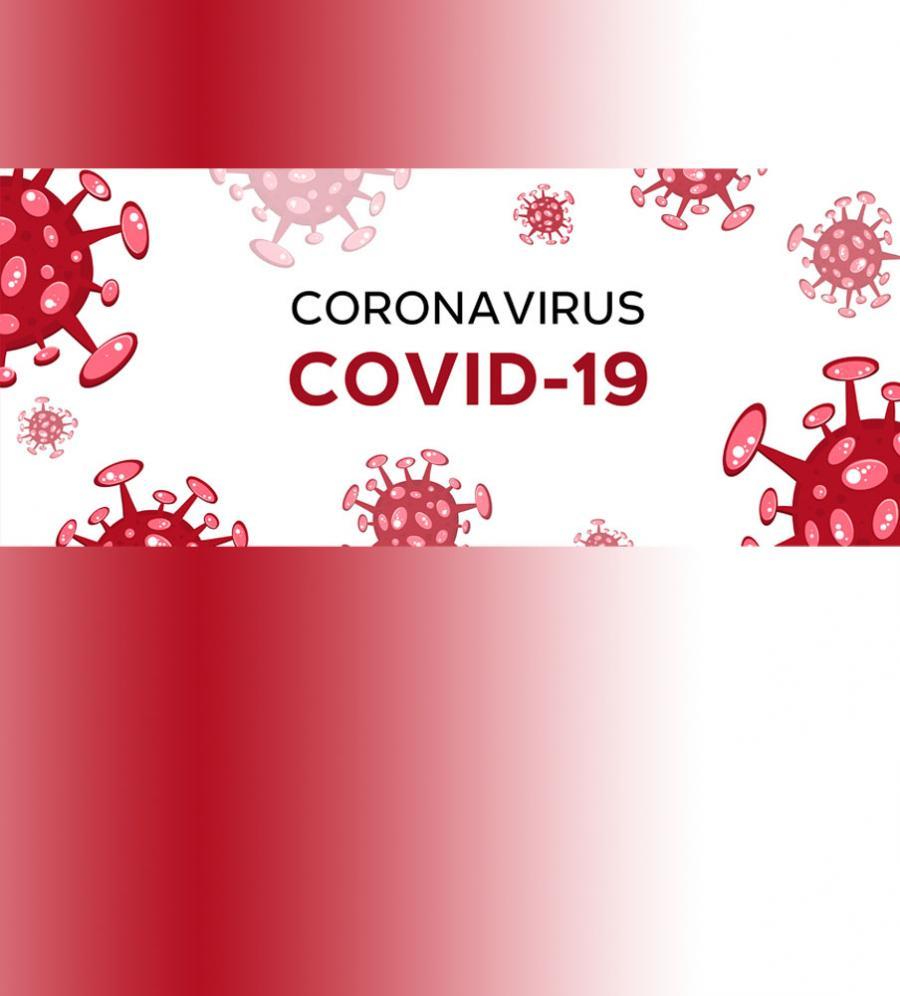 Find kilder til covid-19