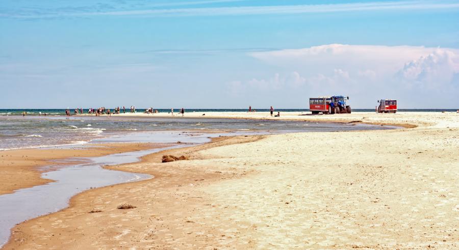 En strand, hvor man i det fjerne kan se Sandormen, som kører turister til Grenen.