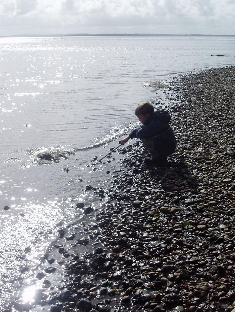 dreng på dansk strand